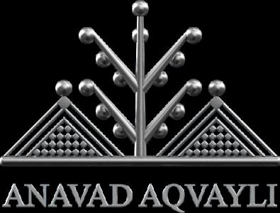 Logo Anavad en argent (alpha)